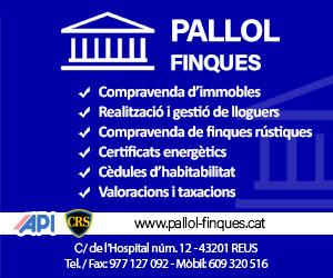 Finques Pallol – Juny 2020 · 300×250