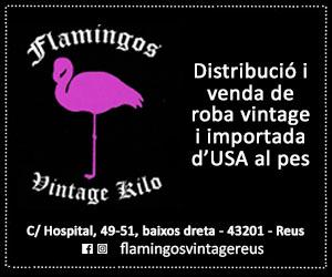 Flamingos – Juny 2020 · 300×250