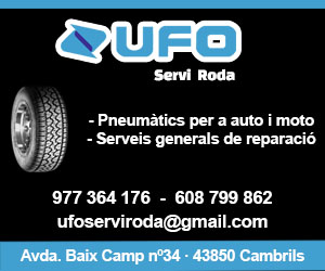 UFO – 300 x 250