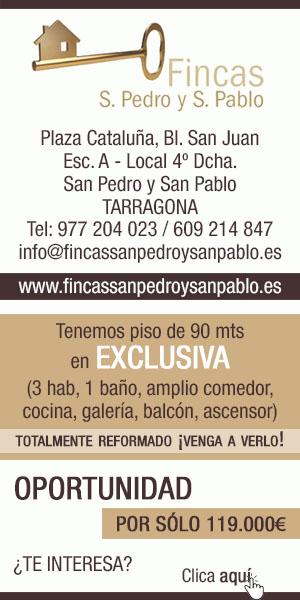 Fincas San Pedro y San Pablo – Agost 2020