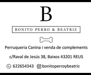 Bonito Perro – 300×250