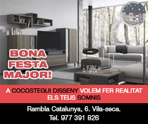 Cocostegui – 300×250