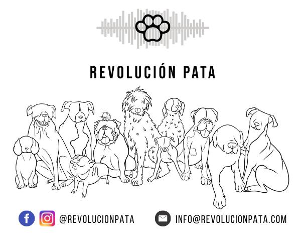 Revolución Pata